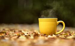 Mood Mug Cup Yellow Hot Tea Leaves Yellow Autumn HD Wallpaper