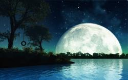 Beautiful Romantic Moonlight Wallpaper