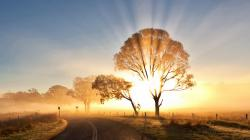 Description: The Wallpaper above is Sunrise morning mist Wallpaper in Resolution 1600x900. Choose your Resolution and Download Sunrise morning mist ...