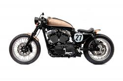 The Bald Terrier 1200 by Deus Ex Machina