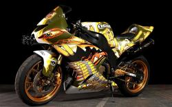 Crotch Rockets, Bikes, Cars, Full Body, Custom Motorcycles, Custom Bike, Icons, Sports Bike, Paintings Design
