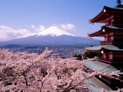 After Tokyo, we climbed Mt. Fuji on a whim (the view at the top was so amazing – see pictures below). We also visited Hiroshima (the museum was excellent, ...