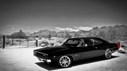 Muscle Car Wallpaper 11