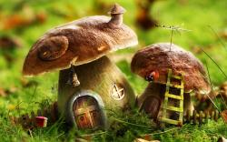 Drawn Wallpapers Mushroom Houses Your Hd Wallpaper Id 1680x1050px