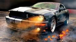 ... Ford Mustang Wallpaper ...