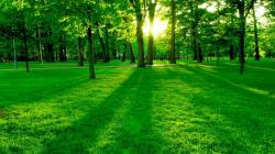 4-Nature+Wallpapers+2014-1
