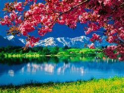 Nature-Wallpaper-daydreaming-34811098-1024-768