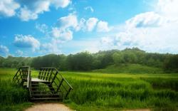 Green Nature Wallpaper Background PC