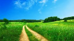 Hd Images Of Nature Hd Background Wallpaper 43 Thumb