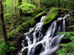 Free Nature wallpaper - Waterfall And Stream 2 wallpaper - 1280x960 wallpaper - Index 19.