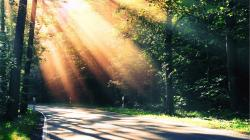 Nature Sun Rays 29818 1920x1080 px