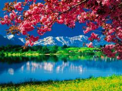 Nature-Wallpaper-daydreaming-34811098-1024-768