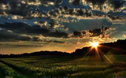Hd Nature Images 9 Thumb