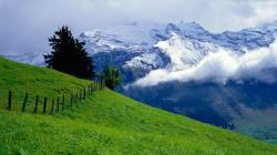 Nature Background Images Hd Background Wallpaper 30 Thumb