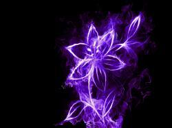 Neon Flowers