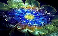 ... Neon Flowers Wallpaper ...