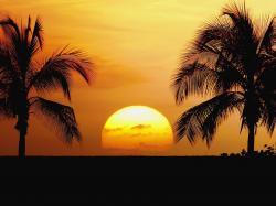 Nice Hawaii Beach