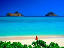 Nice Hawaii Beach