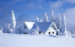 Best Snow Wallpaper