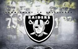 Oakland Raiders NFL Cheapest Jerseys Pro Shop