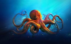 Ness Wallpaper: Octopus Wallpaper Home Design Ideas Town The 1920x1200px