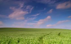 ... Open Landscape Wallpaper ...