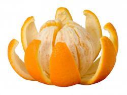 Fresh Orange Fruit HD Desktop Wallpapers