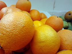 Other varieties of common oranges