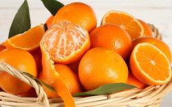 Orange Fruit Photos