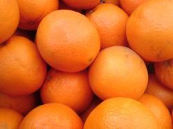 File:Oranges prises par le K800i.JPG