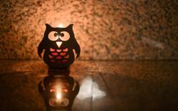 Owl candle lantern