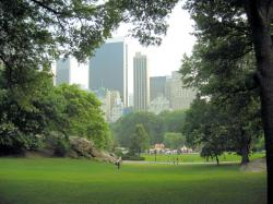 Central Park New York beautiful view