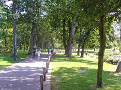 Related Galery In The Park