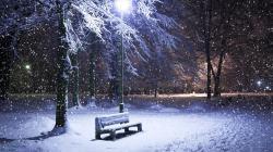 Snow Park Bench