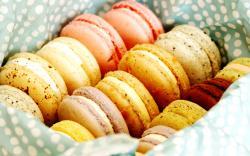 food cookies desserts macaron pastries