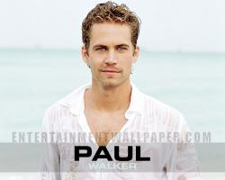 Paul Walker 13 Wallpaper HD Wallpaper