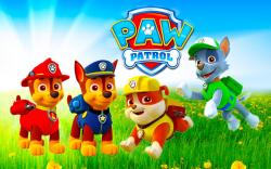 Paw Patrol Chase, Paw Patrol Rubble, Paw Patrol Marshall and Funny ToysUsa Channel