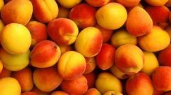 Peach Wallpaper HD