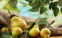 Pears Fruit Autumn HD Background is a awesome hd photography. Free to upload, share the high definition photos. Pears Fruit Autumn HD Background is a part ...