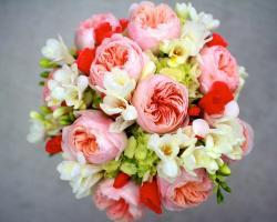 Peony, freesia, hydrangea, flowers bouquet wallpaper 1280x1024.