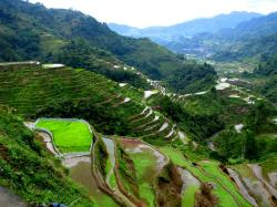 banaue-rice-terraces-in-the-philippines