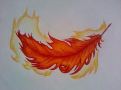 Phoenix Feather by NicholB ...