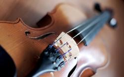Photography Violin