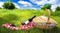 Ready For Picnic HD wallpapers