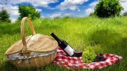 Picnic Wallpaper