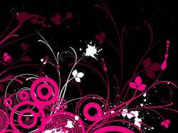 Hot Pink And Black Backgrounds Wallpapers for gt pink