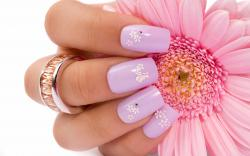 Pink Flower Finger Nails