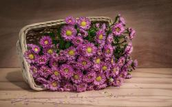 Pink Flowers Basket
