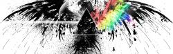 Preview wallpaper pink floyd, bird, graphics, spray, colors 3840x1200