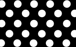 Black Polka Dot Background Wallpapers Hd Wallpaper 2560x1600px